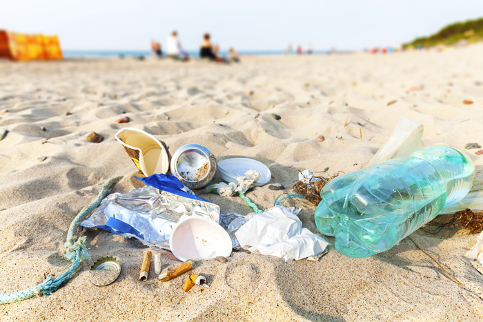 Adopt-A-Highway why you should help beach pollution