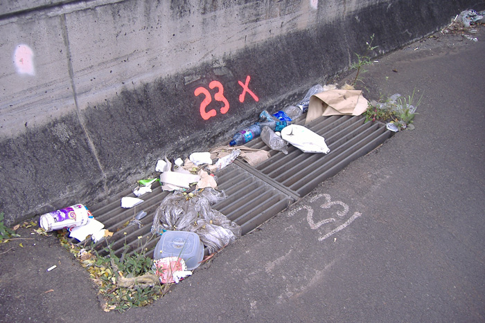 Adopt-A-Highway why you should help trash on highway