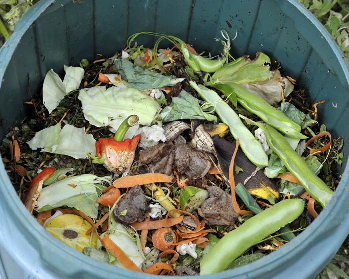 baby steps composting