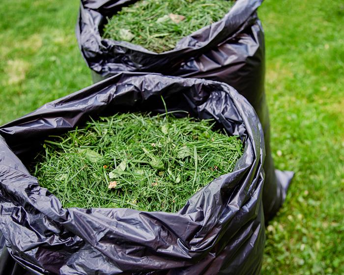 baby steps leaf bag