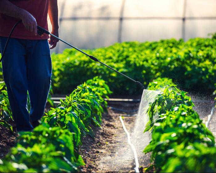 business pesticides